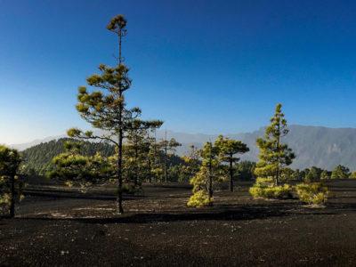 La Palma - Wanderinsel pur thumb