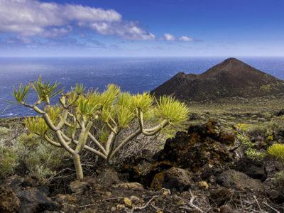 La Palma - aus Vulkanen geboren thumb
